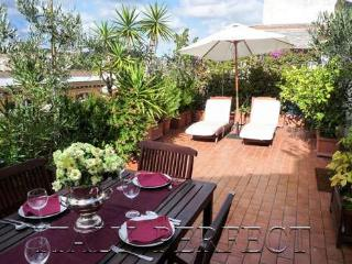 Perfect Refined Luxury Penthouse-Terrace-Fresco - Rome vacation rentals