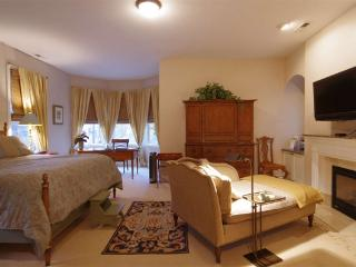 Luxurious Bed and Breakfast in Oak Park, IL - Oak Park vacation rentals
