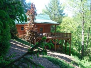 Autumn Mist-Trout Stream_4.5 acres_hot tub_pool table_near Boone/West Jefferson_wifi_pets_ - Fleetwood vacation rentals
