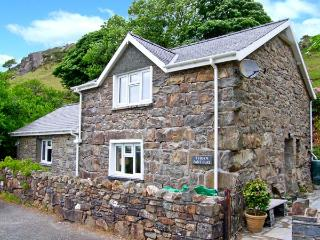 TYDDYN PANT GLAS, pet-friendly character cottage, country views, en-suites, Llan Ffestiniog Ref. 25916 - Llan Ffestiniog vacation rentals