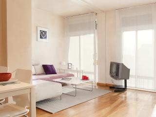 Park Guell apartment - Catalonia vacation rentals
