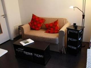 Modern Apartment in Downtown Reykjavik - Paris vacation rentals