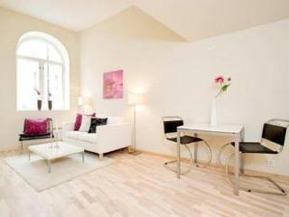 Large 2 Bedroom Apartment Next To Oslo's Frogner Park - Image 1 - Oslo - rentals