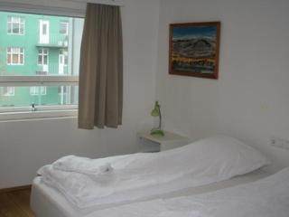 Fantastic apartment on Laugarvegur shopping street. - Iceland vacation rentals
