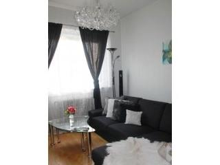 Elegant Apartment in Vika, Central Oslo - Oslo vacation rentals