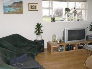 Cosy Apartment Near the City Center - Iceland vacation rentals