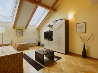 Brand new luxurious in the centre 2 - Prague vacation rentals