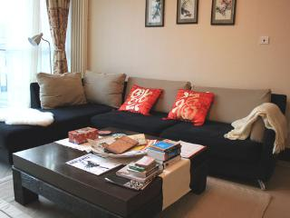 5BD 2BTH #8 (5Beds) Fully Serviced Apartment-Central Business District - Beijing Region vacation rentals
