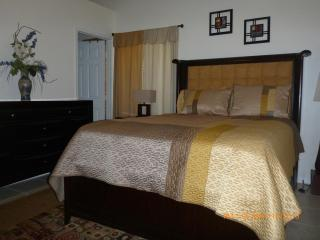 Cozy house in down town Clearwater - Clearwater vacation rentals