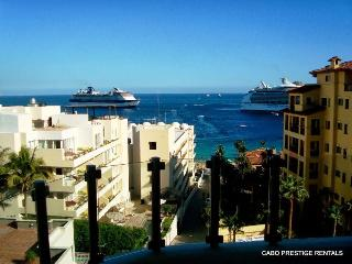 ★ Incomparable Condo. Ideal Location-Walk Everywhere!! ★ - Cabo San Lucas vacation rentals