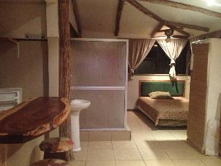 Talamanca Suite, the best deal in Costa Rica NICE - La Fortuna de Bagaces vacation rentals