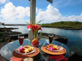 Oceanfront Jewel by the Sea - Mika Lani - Snorkel Paradise - Puna District vacation rentals