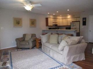 1734 Baltic Avenue - Virginia Beach vacation rentals