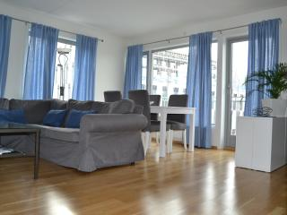 Oslo city centre - high standard apartment - Oslo vacation rentals