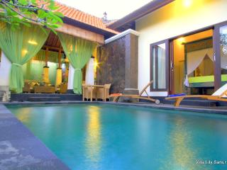 Villa Lily Sanur Bali - Close to the Ocean - Sanur vacation rentals