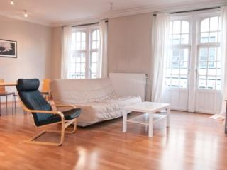 ID 2426 - Huge 1 Bdr Apt - steps from Av. Louise - Belgium vacation rentals