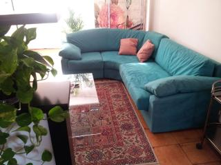Happy Verona Apartment : WiFi,terrace,parking - Verona vacation rentals