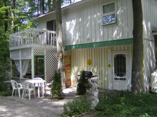 Starry Starry Night - between Traverse City & Interlochen - Northwest Michigan vacation rentals