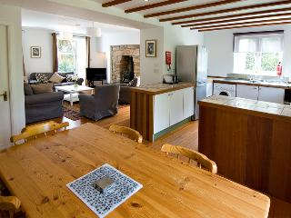 Lovely 3 bedroom cottage in its own garden a few minutes walk from the village - Fife & Saint Andrews vacation rentals
