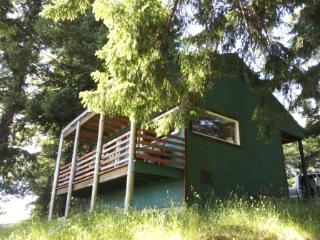 Jaw Dropping View Of the Pacific Ocean and Meadows - Port Orford vacation rentals