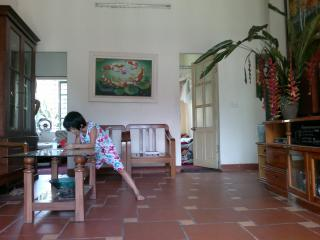 house in a very nice villige - Vietnam vacation rentals