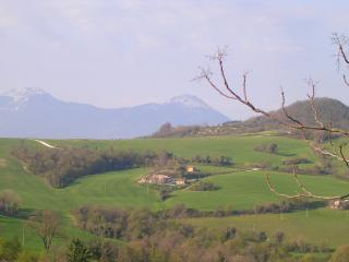 Apartment with pool Le Marche Italy - Fossombrone vacation rentals