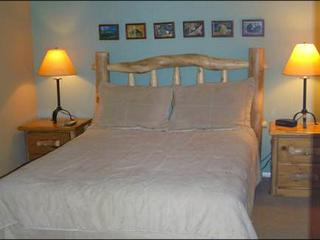Comfortable Base Area Lodging - Perfect for Families or Friends (1261) - Crested Butte vacation rentals