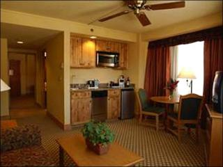 Affordable, Centrally Located Accommodations - Great On-Site Amenities (1301) - Crested Butte vacation rentals