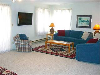 Cozy Mountain Condo - Ideal for a Small Family (1315) - Crested Butte vacation rentals