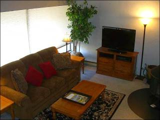 Sunny & Open Vacation Condo - Stylish Furnishings Throughout (1323) - Crested Butte vacation rentals