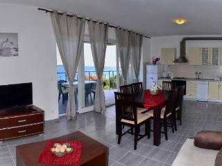 Apartment Marija - 43481-A1 - Zavala vacation rentals