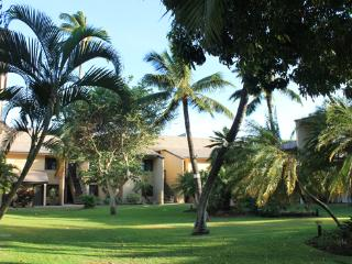 2BR; Walk to Beach; Central Kihei Location! GEC208 - Kihei vacation rentals