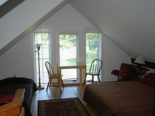 Saxtons River Studio Apartment - Saxtons River vacation rentals
