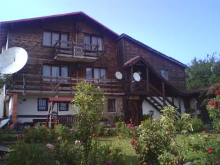 villa in rhodope mountain - Smolyan vacation rentals