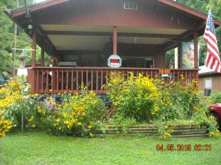 Smoky Mountains Cottage - Sylva vacation rentals