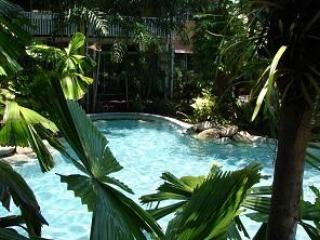 Pool - Palm Cove Tropic Apartment - Palm Cove - rentals
