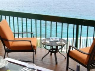 Gorgeous Oceanfront home w/ private swimmingdock - Willemstad vacation rentals