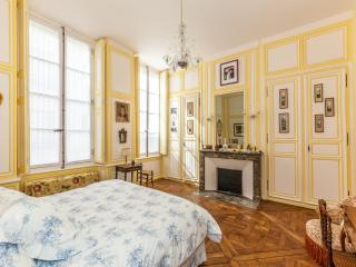 Splendid two-bedroom apartment in Versailles - Paris vacation rentals