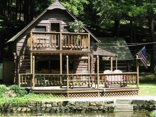Log Cabin,Close to Cherry Springs State Park - Coudersport vacation rentals