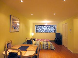 New modern studio in green area - Montreal vacation rentals