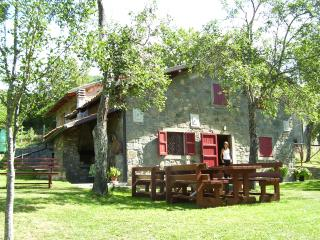 LAST MINUTE Holiday House CAsini di Corte - San Romano in Garfagnana vacation rentals