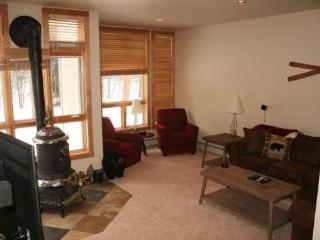 River Glenn - Dillon vacation rentals