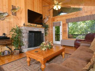 Bear Essentials - Gatlinburg vacation rentals
