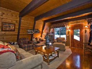 Bear Cub Lodge-hot tub, pool, beach, SKI LEASE buoy - Homewood vacation rentals