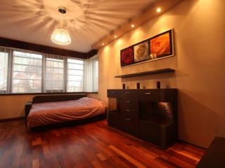 Luxury Apartment in the centre of the city - Wroclaw vacation rentals