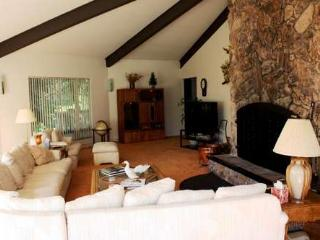 5200 sq ft of Chamberland fun,pool table, dog ok - Tahoe City vacation rentals
