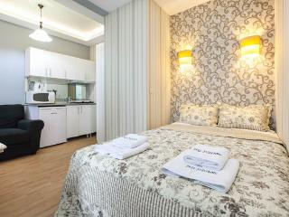 2B- Studio-1min to istiklal str.- 4pp - Istanbul vacation rentals