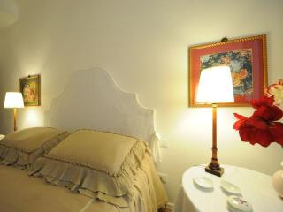 Elegant and Luxury apartment - Florence vacation rentals