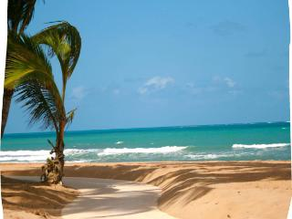 Deluxe Two Bedroom Villa DIRECTLY on the ocean. - El Yunque National Forest Area vacation rentals