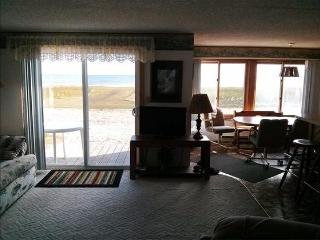 2 Bedroom, Beach Front Cottage on Lake Huron - Oscoda vacation rentals